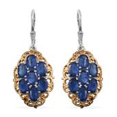 Himalayan Kyanite 14K YG and Platinum Over Sterling Silver Lever Back Earrings TGW 8.25 Cts.