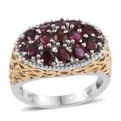 Anthill Garnet 14K YG and Platinum Over Sterling Silver Ring (Size 7.0) TGW 2.680 cts.