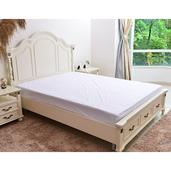 Rayon from Bamboo Mattress Protector (Queen)