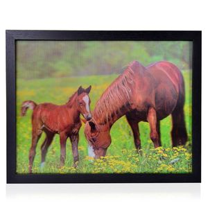 Horse Family 3D Painting with Photo Frame (16.7x12.7 in)