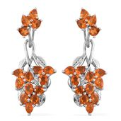 Salamanca Fire Opal Platinum Over Sterling Silver Earrings TGW 2.70 cts.